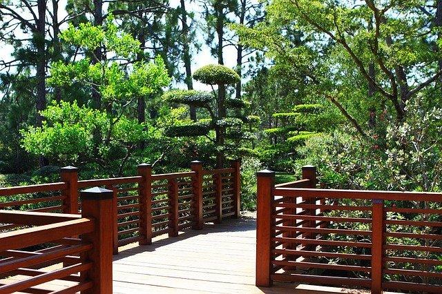 Gardens with boardwalk