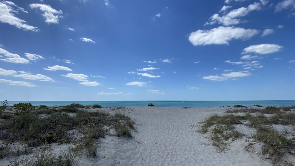 Venice Florida Beach overlooking water.